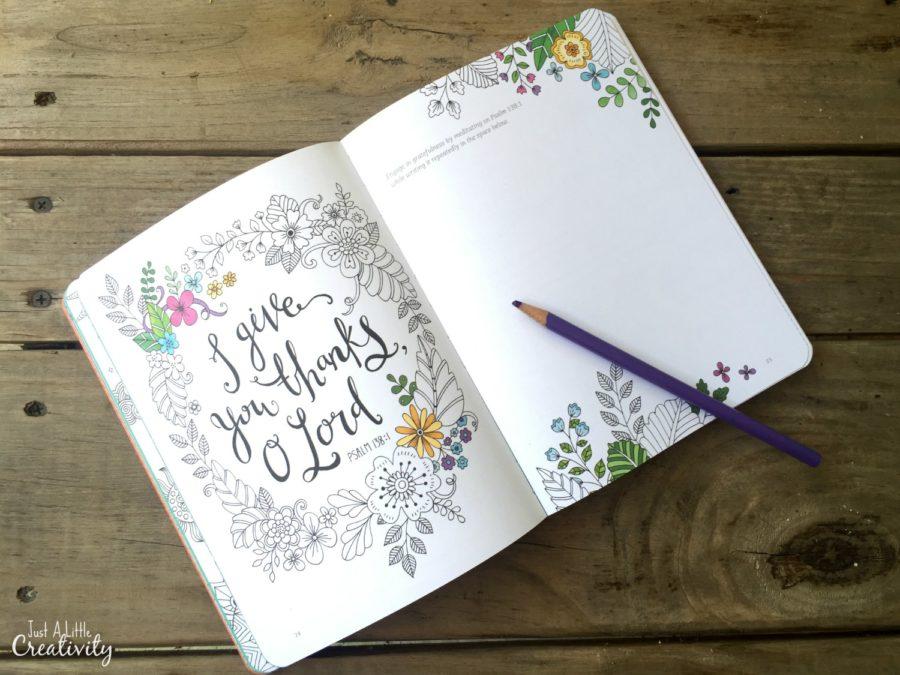 Gratitude A Prayer And Praise Coloring Journal